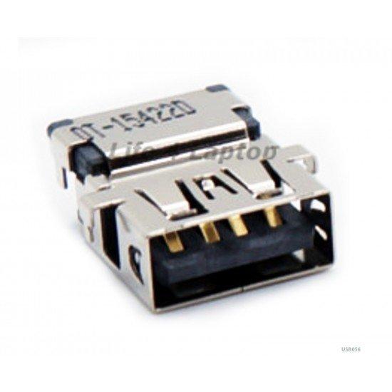 USB lizdas